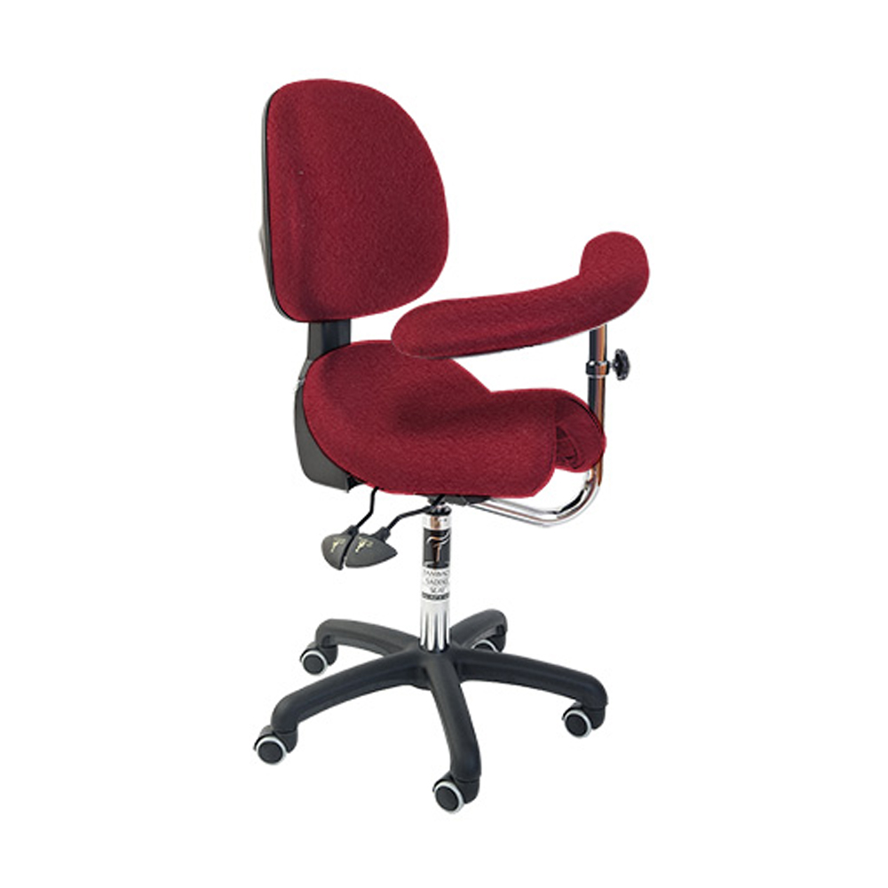 Bambach Seat with back and Swing arm Ferrari